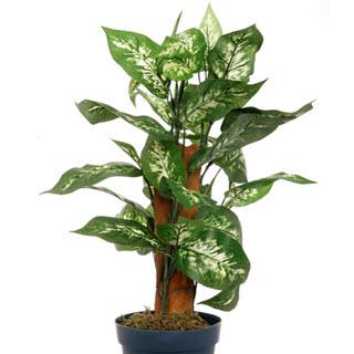 Dieffenbachia Deko Kunstpflanze