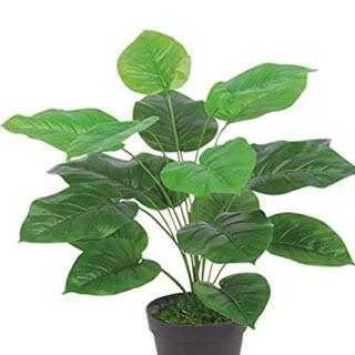Efeutute Kunstpflanze