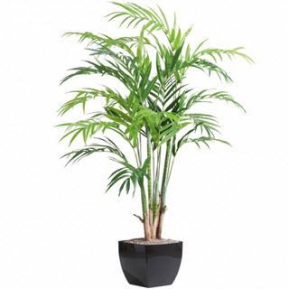 Kentiapalme Kunstpflanze