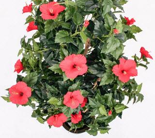 Hibiskus Kunstbaum