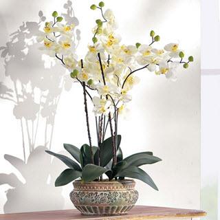 Orchidee Kunstblumen Deko