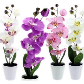 Orchideen künstliche Zimmerpflanzen (Quelle: Amazon)