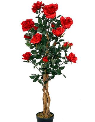 Künstlicher Rosenbaum